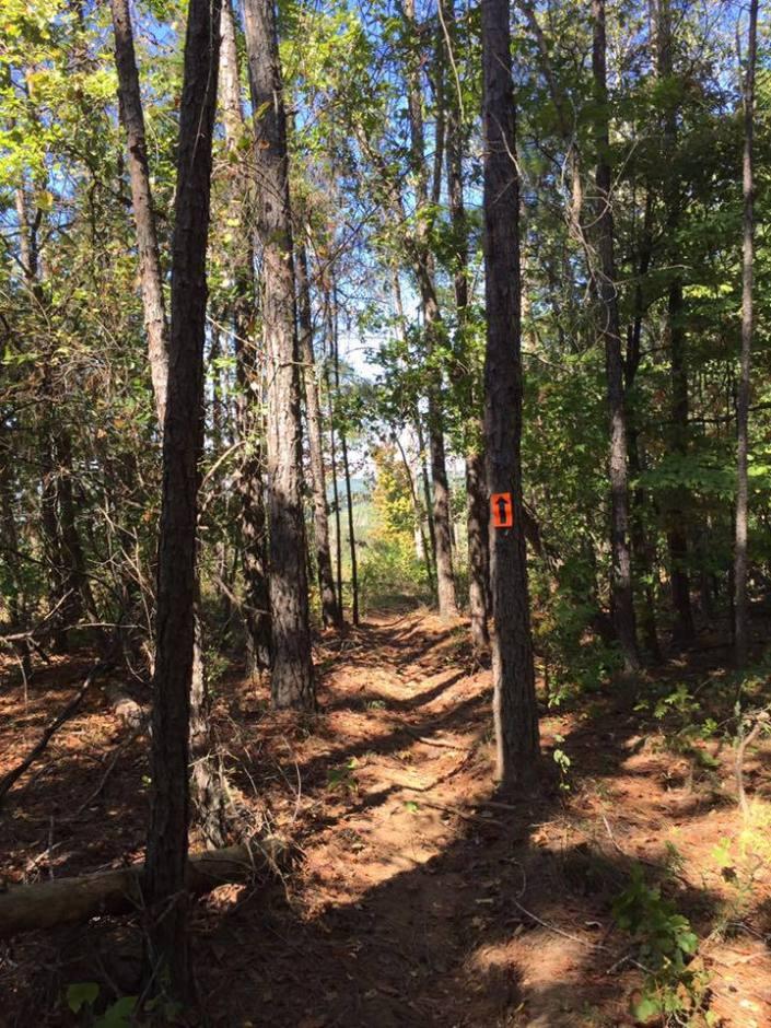 gg-trail1