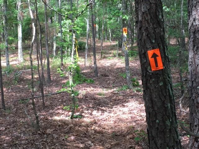2017 Cherokee Enduro Trail 1